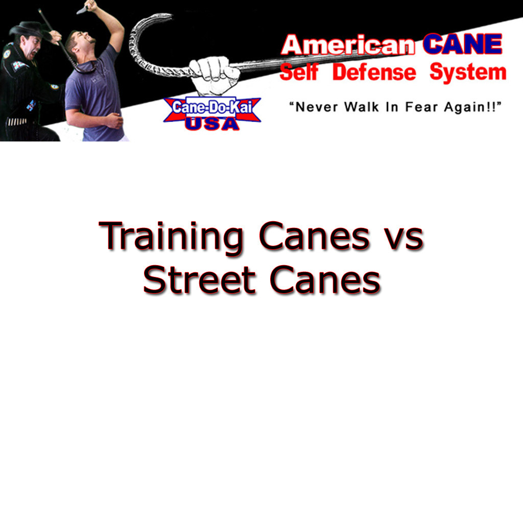 Training Cane Vs Street Canes (Video)