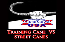 trainingcane-streetcane