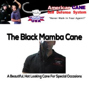 black-mamba-1024