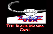 blackmambacane-featured