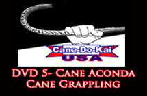 cane-acond-featured