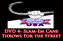 dvd4_slam-em_featured