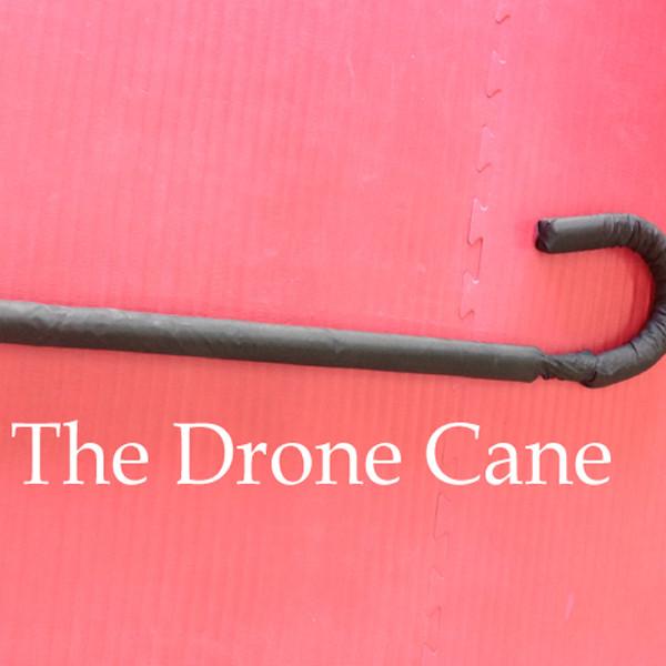 drone-cane