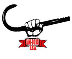 american cane self defense