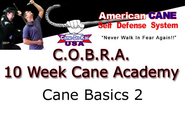 Cane Basics – 2