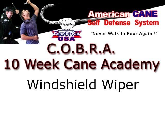 Windshield Wiper