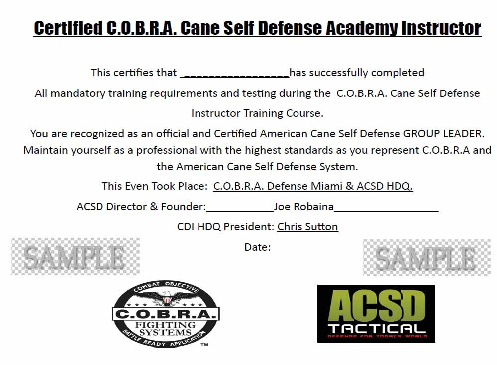2 Day Immersion Cane Self Defense Instructor Certification
